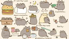Pusheen The Cat Hintergrundbilder - Phone Wallpapers - Chat Cat Wallpaper, Pattern Wallpaper, Memes Humor, Crazy Cat Lady, Crazy Cats, Totoro, Gato Pusheen, Pusheen Stuff, Neko