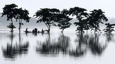 Tataliguri, India: Villagers travel on a country boat through flood waters
