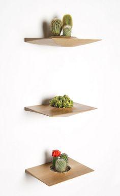 Modern wall planters