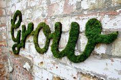 Moss Graffitti