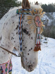 Replica Crow horse gear Horse Gear, Horse Tack, Indian Horses, Plains Indians, Crow