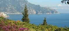 Da Ciccio Restaurant in Amalfi - Sea food typical cuisine of the Amalfi Coast