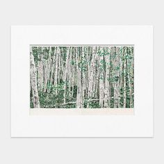 Odenbach You Can't See The Forest For The Trees Matted Print