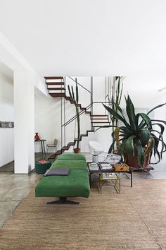 Love the geometric effect of the stairs! The low green benches and oversize plant are perfect.