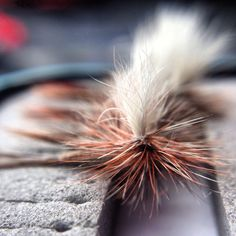 Parachute Adams #flyfishing #fly