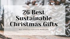 Sustainable Christmas Gift Guide Christmas Gift Guide, Christmas Gifts, Gifts For Family, Gifts For Friends, Paper Pot, Sustainable Gifts, Zero Waste, Sustainability, Eco Friendly
