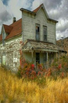 Abandoned but beautiful