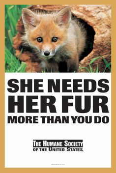 Please do not kill for sport or fur. You can get very realistic fake fur if you must. Don't be a monster.
