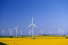 how i'd love to look in the fields and see these natural powered energy savers instead of knowing oil is being sucked out from underneath us and is depleting. What Is Wind Energy, Building A Wind Turbine, Energy Saver, Power Energy, Wind Power, Fields, Outdoors, Paintings, Oil