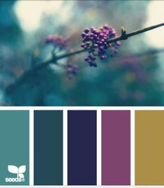 Blue Green Grey Color Scheme | 1000+ ideas about Plum Living Rooms on Pinterest | Burgundy Bathroom ...
