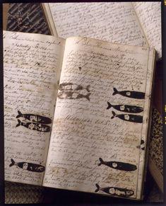 Antique whaling log.