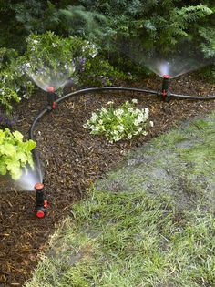 Above Ground Irrigation Systems for Landscaping | DIY Sprinkler System Outdoor Landscaping, Front Yard Landscaping, Backyard Landscaping, Outdoor Gardens, Landscaping Ideas, Modern Landscaping, Outdoor Plants, Landscaping Equipment, Hydrangea Landscaping