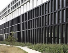 Gallery of EDF Campus / ecdm - 2