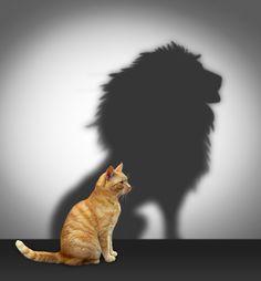 """O """"1"""" é o número da individualidade, da ação, da coragem, do foco e determinação. É ir! Ainda que com medo e ressalvas...vá! O fluxo está favorável, mas..."""