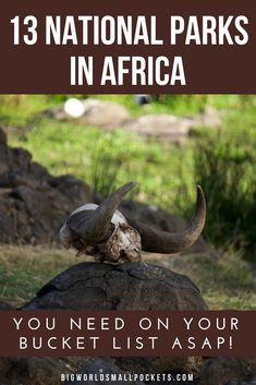 13 National Parks in Africa You Need to Visit! - Big World Small Pockets Kenya Travel, Africa Travel, Places To Travel, Travel Destinations, Africa Destinations, Cultural Experience, African Safari, Travel Guides, Travel Info