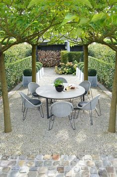 Landscaping Software - Offering Early View of Completed Project Leuk - Modern Gravel Patio With Tree Pergola And Boxwood Small Modern Garden Design Patio Pergola, Gravel Patio, Backyard Patio, Backyard Landscaping, Backyard Ideas, Pergola Kits, Pea Gravel, Gravel Garden, Landscaping Ideas