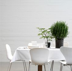Contemporary home decor from Scandinavian & Asian designers. Shop tableware, textiles, lighting & home accessories Contemporary Home Decor, Indoor Plants, Home Accessories, Table Settings, Dining Table, Living Room, House, Inspiration, Furniture