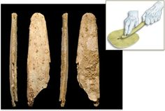 New discoveries of polished bone tools at two prehistoric sites in France suggest that Neandertals independently invented these finely made implements, without a helping hand from Homo sapiens. The finds may represent the best sign yet that Neandertals were no boneheads when it came to technological innovation.