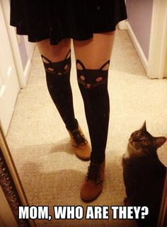 Kitty leggings.
