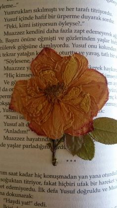We are read #pressed flowers# we Love it#