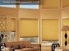 How interesting!  Check this out! Energy Efficiency - Hunter Douglas Window Fashions