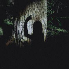 Sage Against the Machine — Slytherin INFJ Pisces Sun Aries Moon Gemini. Narnia, Flower Yellow, Half Elf, Chise Hatori, Just Kids, Elf Druid, The Ancient Magus Bride, Wood Elf, Natsume Yuujinchou