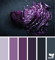 chopped hues color palette from Design Seeds Scheme Color, Brown Color Schemes, Colour Pallette, Color Combinations, Design Seeds, Lila Palette, Black Color Combination, Purple Color Palettes, Purple Paint Colors