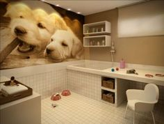 Dog Grooming Salons, Grooming Shop, Dog Grooming Business, Pet Grooming, Pet Cafe, Dog Bathroom, Dog Spaces, Pet Hotel, Yorky