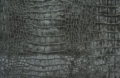 Limpopo Velvet Crocodile Fabric A striking crocodile skin velvet in pewter. Suitable for Upholstery, Soft Furnishing and curtains.