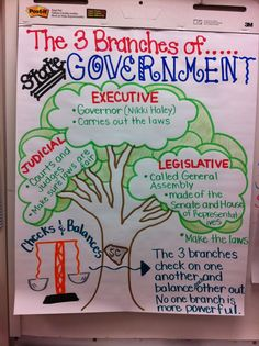 Branches Of Government Anchor Chart Social Stus Resources Clroom Teaching