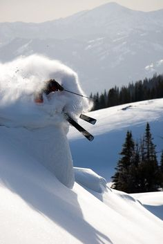 Snow Ski | Plowing through the powder | Tales From the Rock