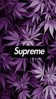 LiftedMilesOG Creativity Supreme Street Wear Supreme Wallpaper XISTmade::Clic Source by life_sosa_ Weed Wallpaper, Hype Wallpaper, Graffiti Wallpaper, Dark Wallpaper, Screen Wallpaper, Gucci Wallpaper Iphone, Hypebeast Iphone Wallpaper, Simpson Wallpaper Iphone, Phone Backgrounds