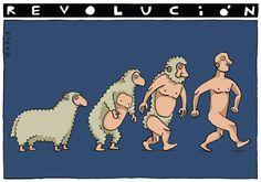 sheep-volution