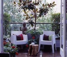 large tree, room like, Buddha, modern and rustic, open doors vantage point