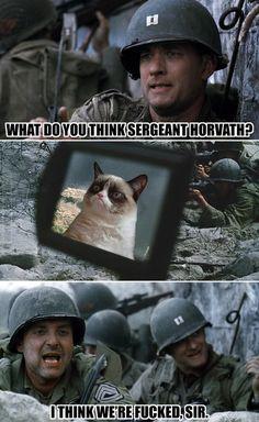 Grumpy Cat stars in saving private Ryan