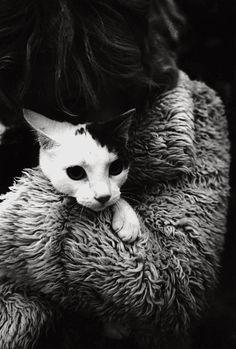 ©Micke Berg  Stockholm, 1975