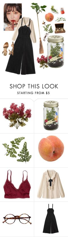 """hazel the garden witch"" by sunblush ❤ liked on Polyvore featuring CB2, Pavilion Broadway, American Eagle Outfitters, Retrò, Alice McCall and Gap"