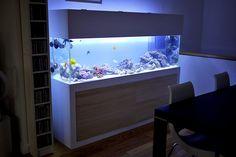Modern Fish Tank Stand