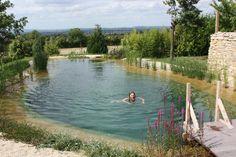 piscina biológica, ecologica
