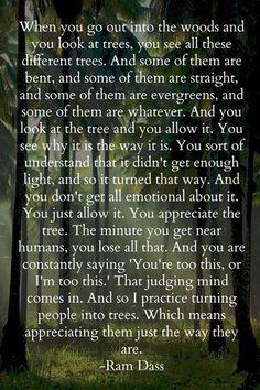 Shared from Ram Dass, Love Serve Remember