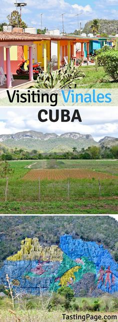 Visiting Vinales Cuba - what to see, do and where to eat | TastingPage.com