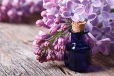 ПОКА ЦВЕТЕТ СИРЕНЬ ЗАПОЛНИТЕ БАНКУ РАСТИТЕЛЬНЫМ МАСЛОМ И ФИОЛЕТОВЫМИ ЦВЕТКАМИ – БУДЬ В ТЕМЕ Mademoiselle Bio, Uva Rays, Pomegranate Extract, Home Flowers, Aloe Vera Gel, Herbal Medicine, Dark Circles, Skin Care Tips, Organic Beauty