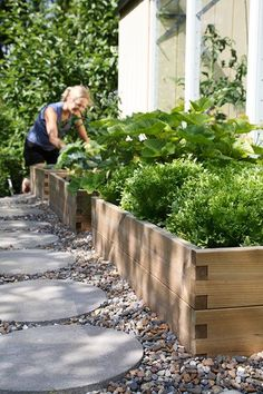 Love the wood, some, concrete contrast... Plant raised beds for herbs right next to house, keep the area tidy with a gravel path with pavers