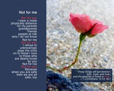 """A poem I wrote today: """"Not for Me"""" Photo credit: Greennix, Pixabay Photo Credit, My Photos, Poems, Encouragement, Writing, My Love, Life, Poetry, Verses"""