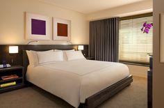 Premier Suite - 1 King Bed