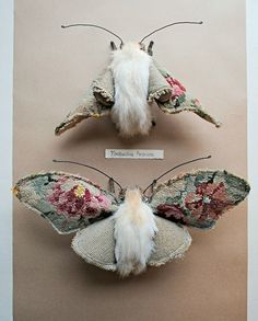 Textile moths By Mister Finch - I love this except for the body of the moth...not sure but it looks like it might be made from fur. :( Maybe try with teddy bear fabric or even velvet? Might have to make my own take on this!