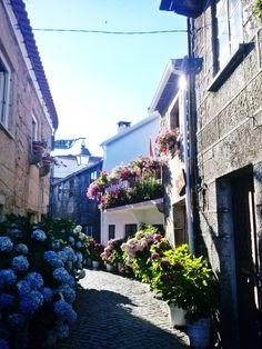 Trancoso historical village, Guarda, Portugal #PortugalFlowerPower