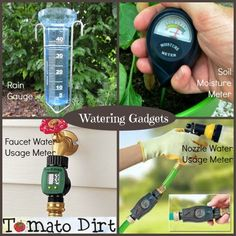 Growing Tomatoes Tips Watering gadgets to help you water wisely and grow healthy tomatoes with Tomato Dirt. - Compare watering gadgets – rain gauge, soil moisture meter, water usage meter – and and know which ones you need. Tips For Growing Tomatoes, Growing Tomatoes In Containers, Grow Tomatoes, Baby Tomatoes, Cherry Tomatoes, Backyard Vegetable Gardens, Tomato Garden, Potager Garden, Fruit Garden