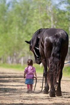 #horses   Every little girl needs one.