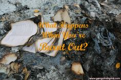 What Happens When You're Burnt Out? - As a woman you wear many hats—wife, mother, daughter, sister, friend, and so on—you do it all and you're surviving... but are you thriving?